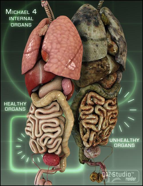 Michael 4 Internal Organs by: nogginshaunahowell, 3D Models by Daz 3D
