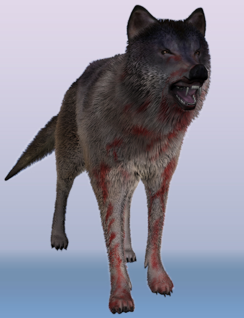 Wolf by AM by: Alessandro_AM, 3D Models by Daz 3D