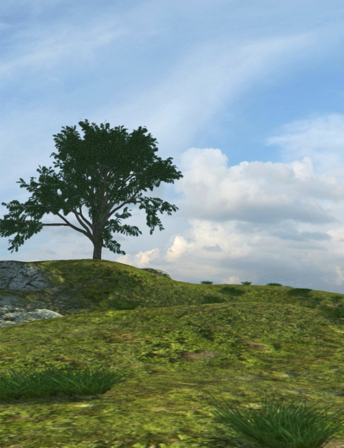 Versatile Terrain by: SoulessEmpathy, 3D Models by Daz 3D