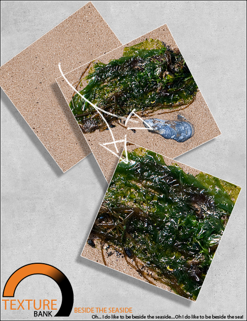 Texture Bank Vol 7 Beside the Seaside by: ForbiddenWhispers, 3D Models by Daz 3D