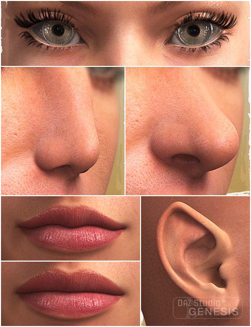 Genesis Evolution: Head Morphs by: , 3D Models by Daz 3D