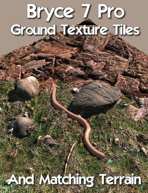 Bryce 7 Pro Ground Texture Tiles and Matching Terrain by: David BrinnenHoro, 3D Models by Daz 3D