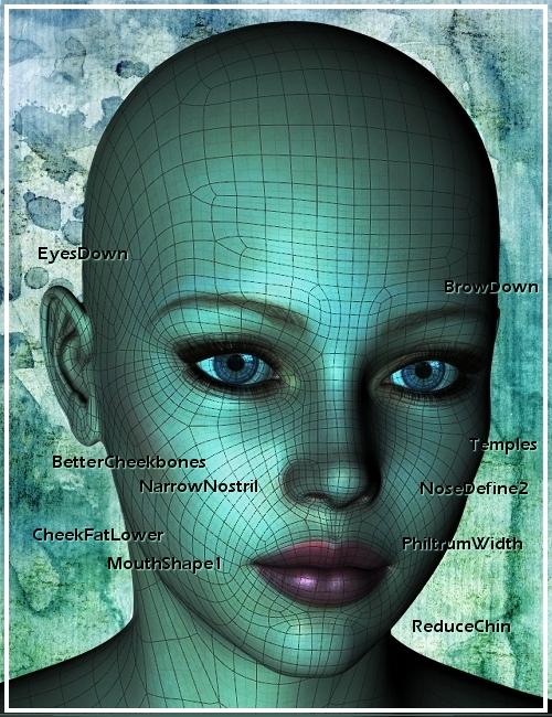 Genesis Head Morph Resource Kit 1 by: ThorneHandspan Studios, 3D Models by Daz 3D