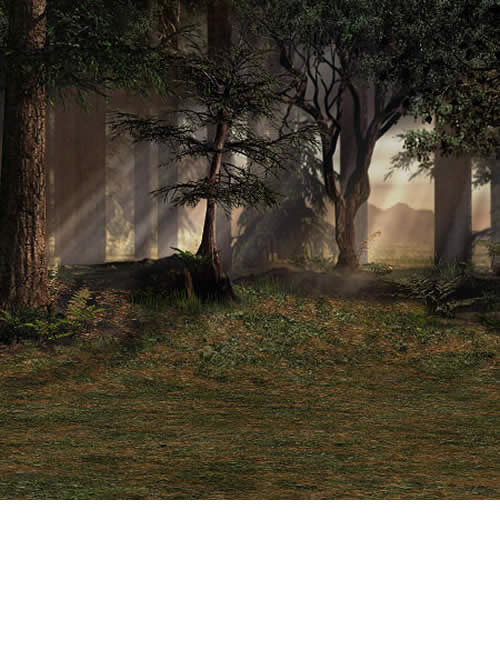 Heart of the Forest by: LaurieS, 3D Models by Daz 3D