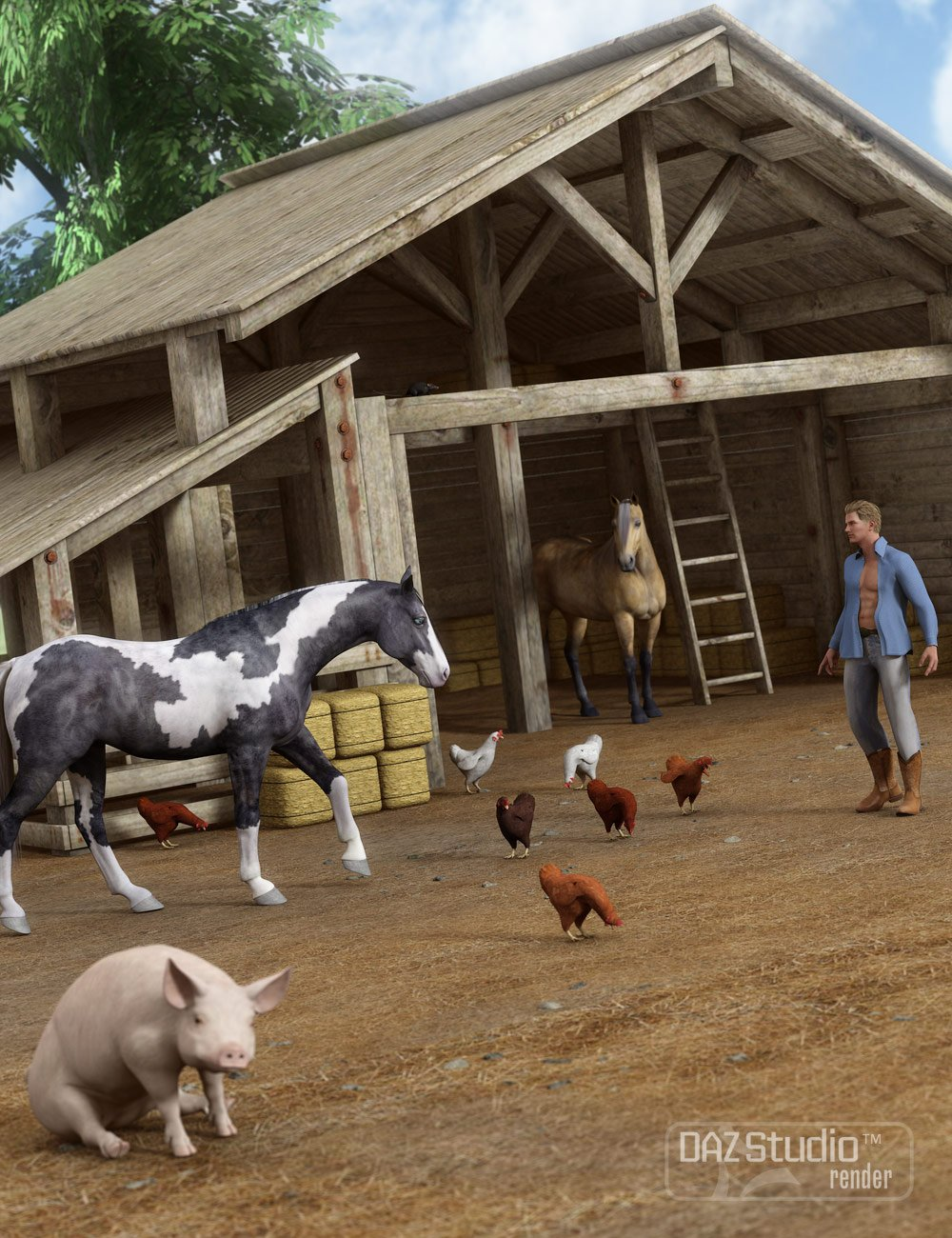 Barn Yard by: ARTCollab, 3D Models by Daz 3D