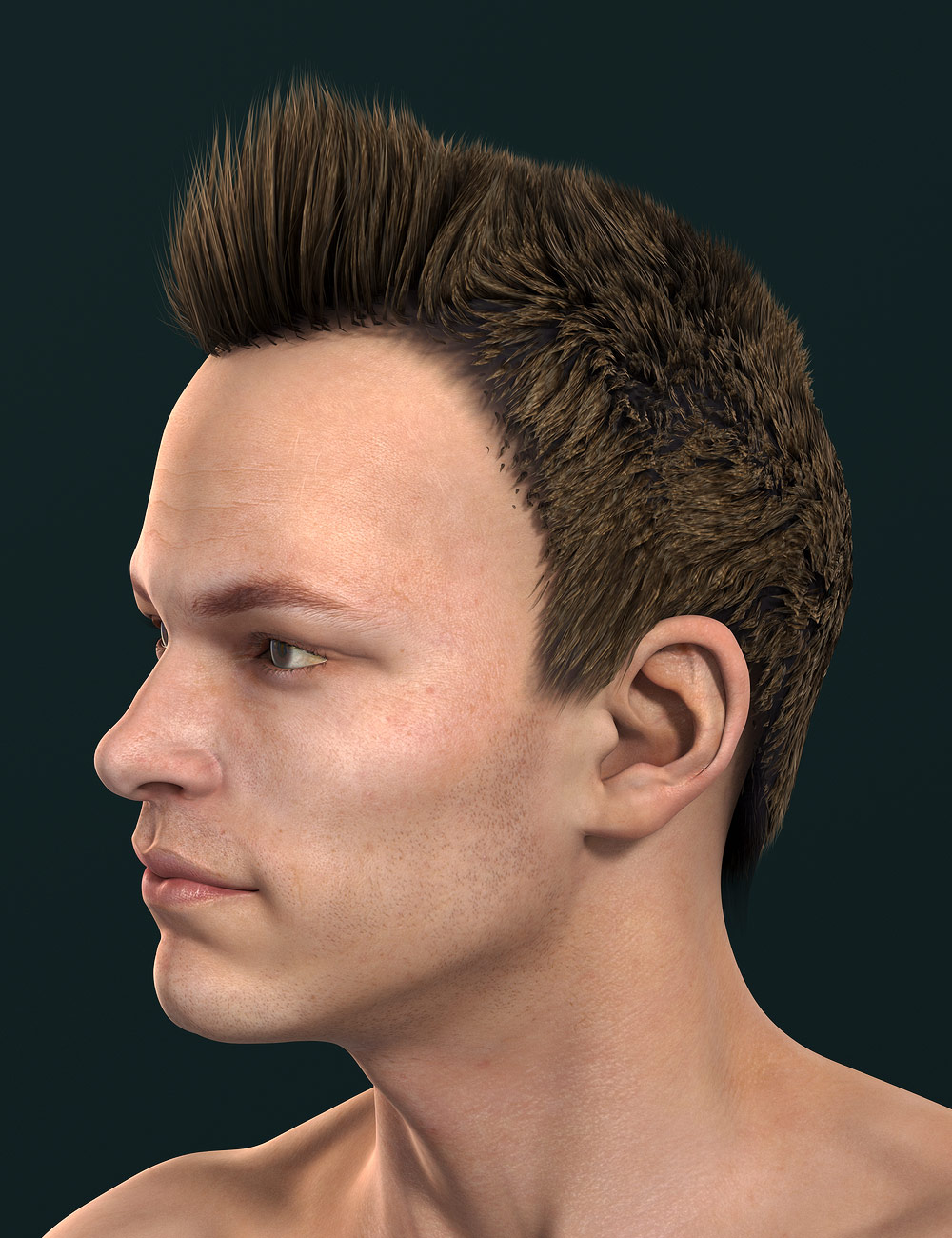 Xavior Hair by: Neftis3D, 3D Models by Daz 3D