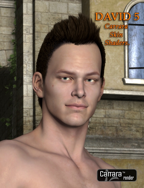 Carrara Skin Shaders For David 5 by: , 3D Models by Daz 3D