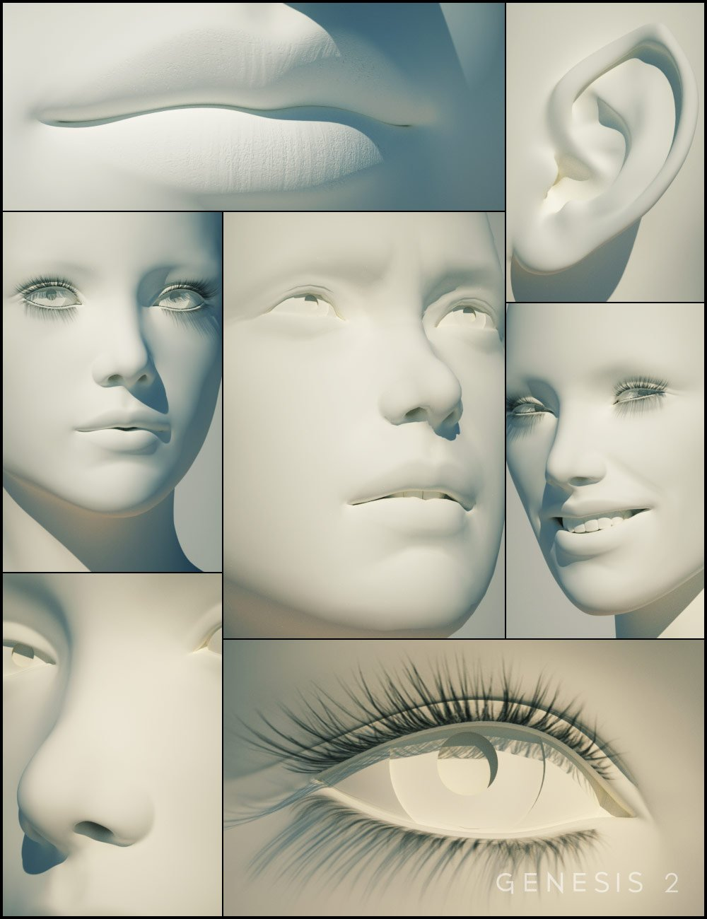 Genesis 2 Female Head Morphs by: , 3D Models by Daz 3D
