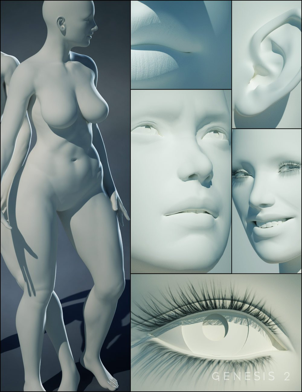 Genesis 2 Female(s) Morphs Bundle by: , 3D Models by Daz 3D