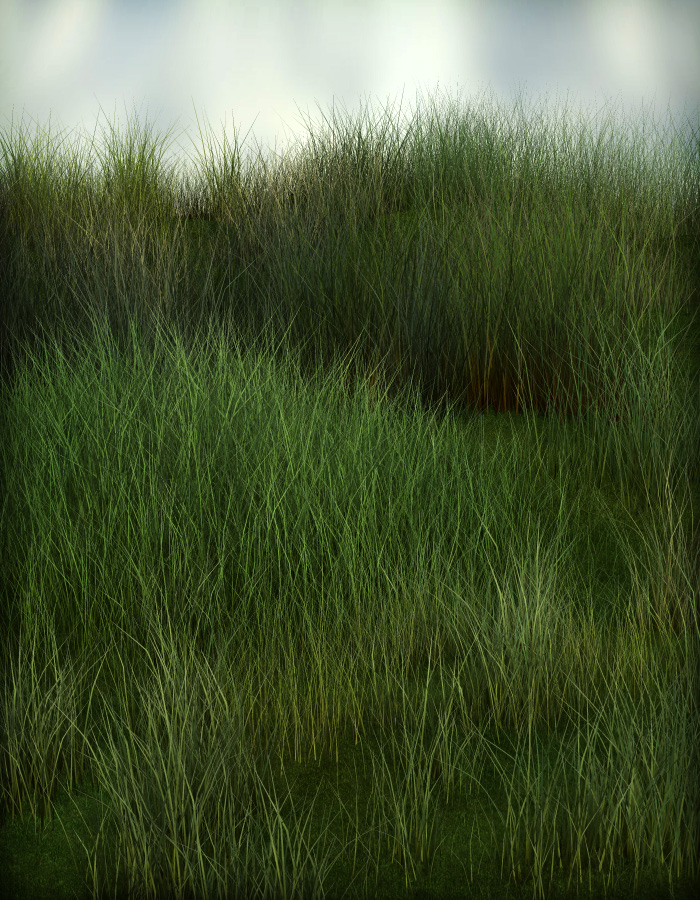 Grassy Grounds Megapack by: esha, 3D Models by Daz 3D