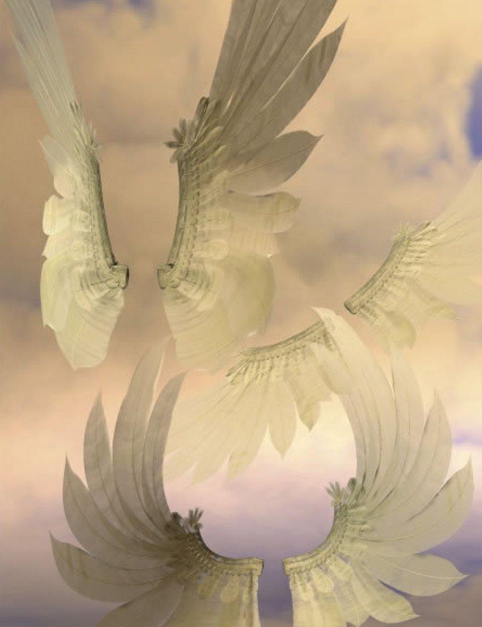 Dreamer Wings by: , 3D Models by Daz 3D