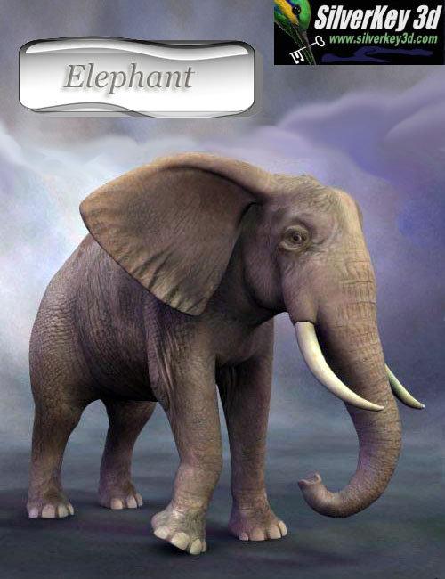 African Elephant by: Debra Ross, 3D Models by Daz 3D