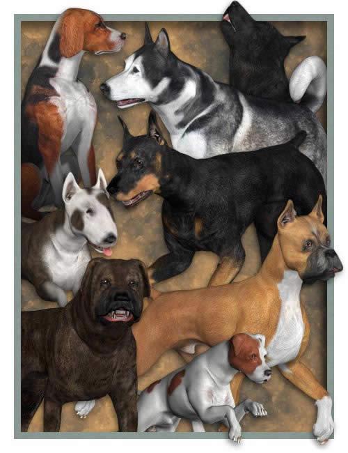 Millennium Dog Bundle by: Lisa's BotanicalsLaurieS, 3D Models by Daz 3D