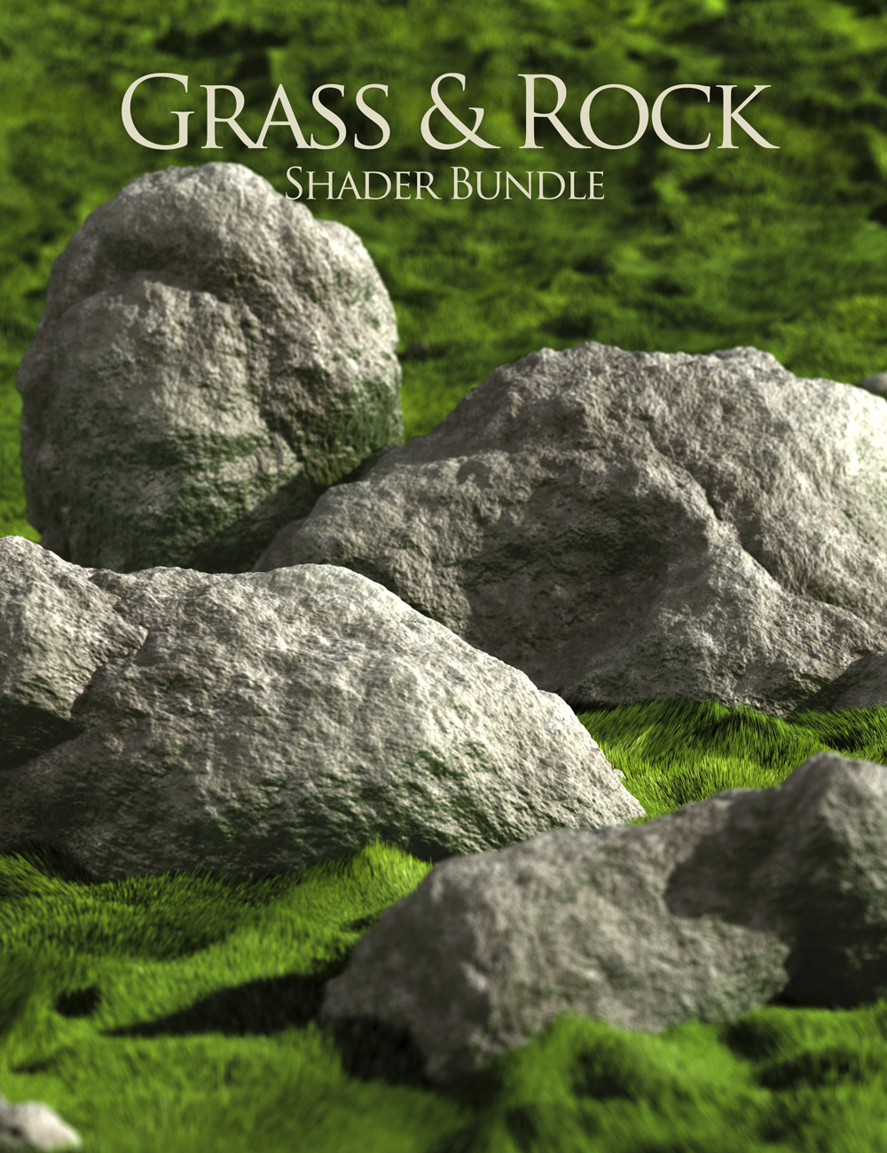 Rock & Grass Bundle by: DimensionTheory, 3D Models by Daz 3D