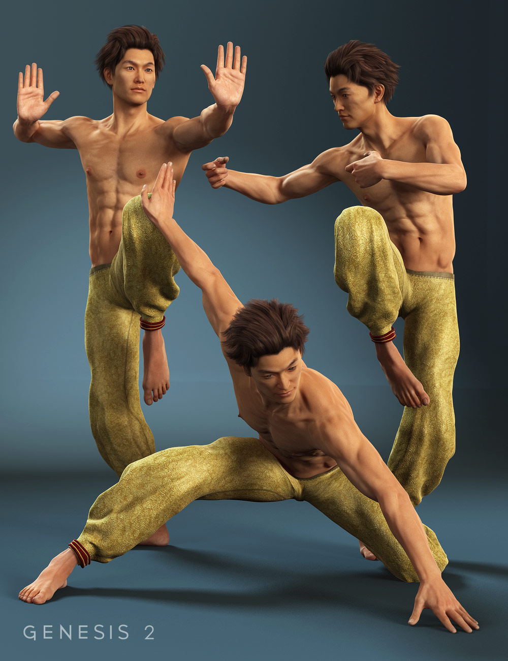 Monk Moves for Lee 6 by: Val3dart, 3D Models by Daz 3D
