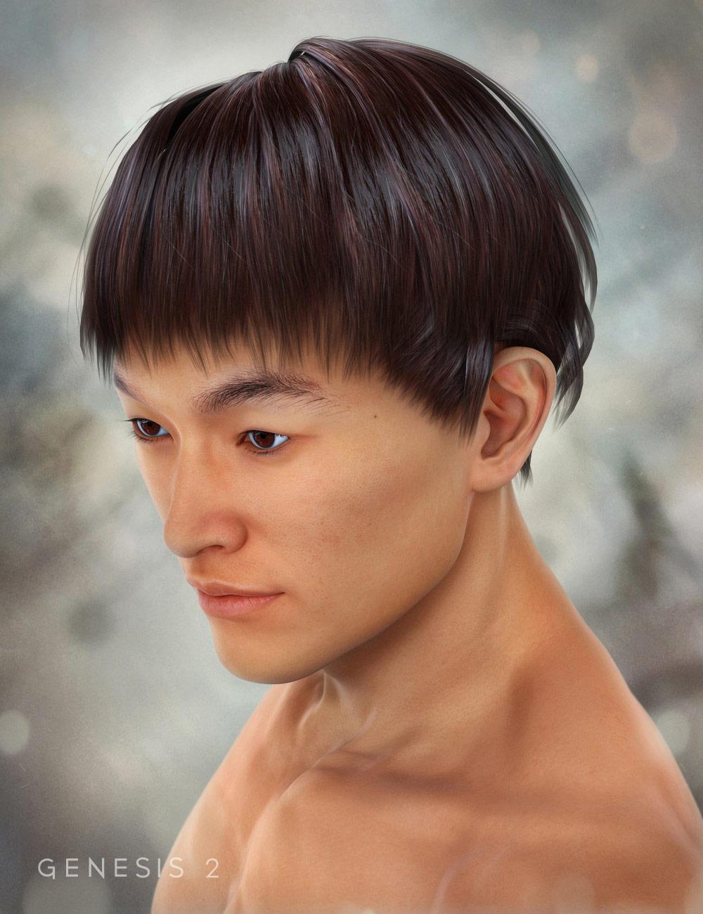 Sai Fon Hair for Genesis 2 Male(s) by: SWAM, 3D Models by Daz 3D