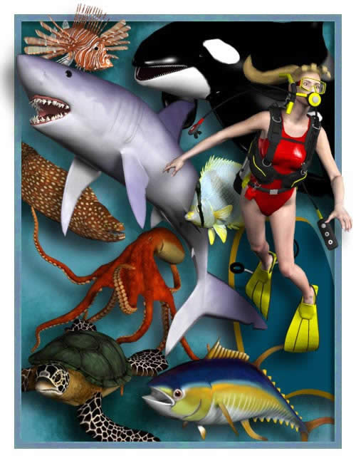 Sea Life Pack 1 by: , 3D Models by Daz 3D