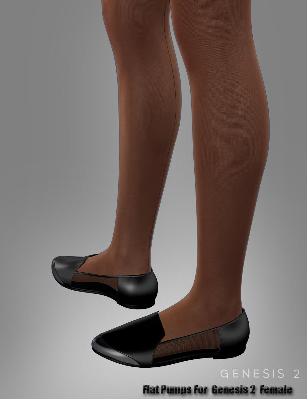 Flat Pumps For Genesis 2 Female(s) by: dx30, 3D Models by Daz 3D