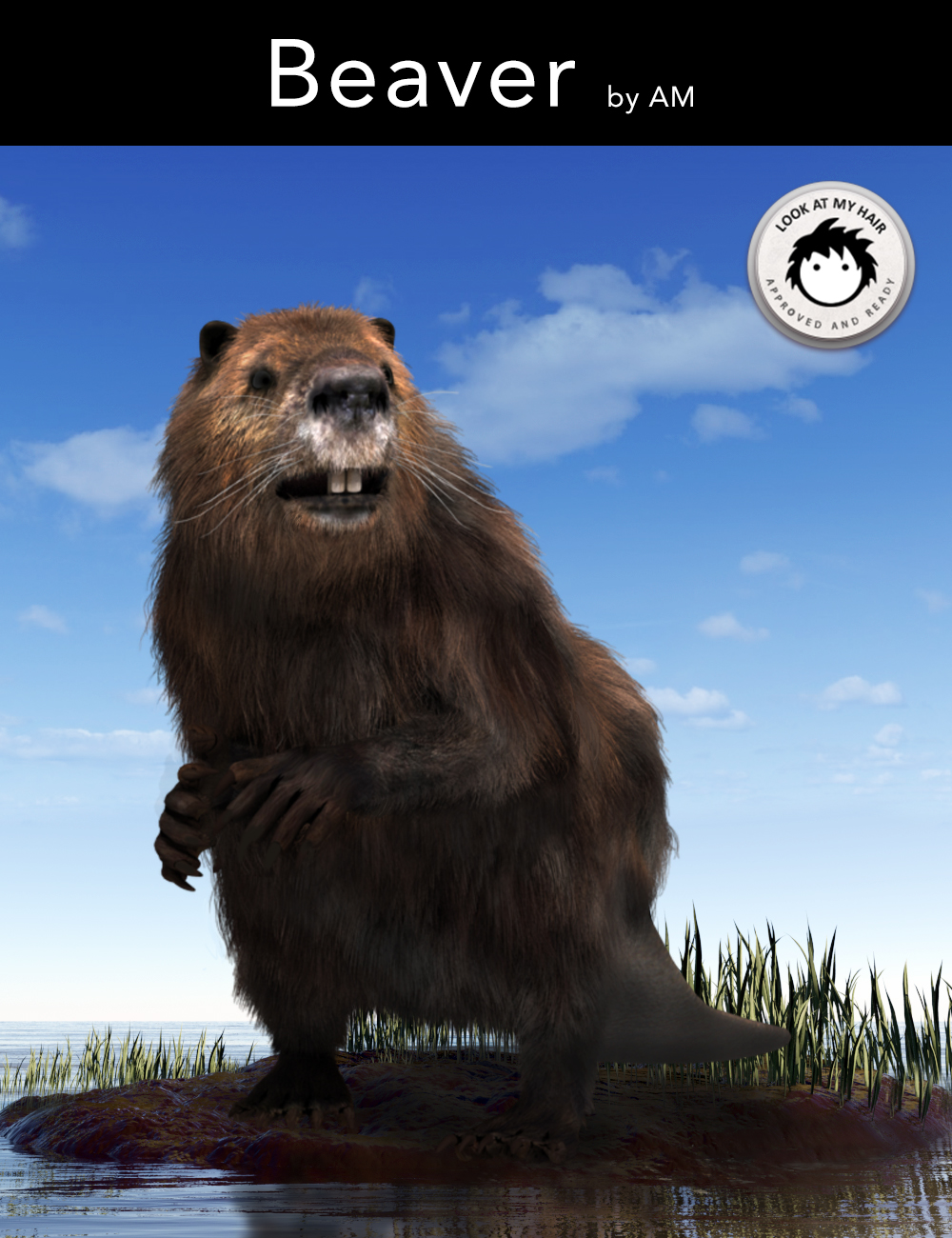 Beaver by AM by: Alessandro_AM, 3D Models by Daz 3D
