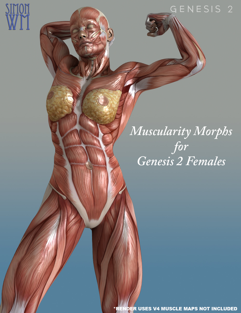 Muscularity Morphs for Genesis 2 Female(s) by: SimonWM, 3D Models by Daz 3D