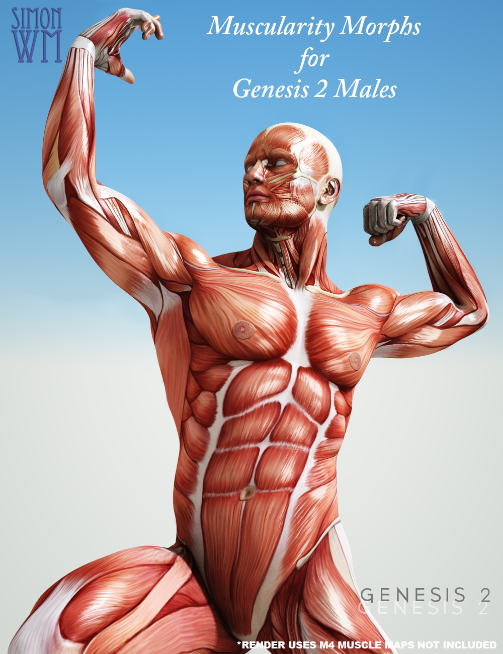 Muscularity Morphs for Genesis 2 Male(s) by: SimonWM, 3D Models by Daz 3D