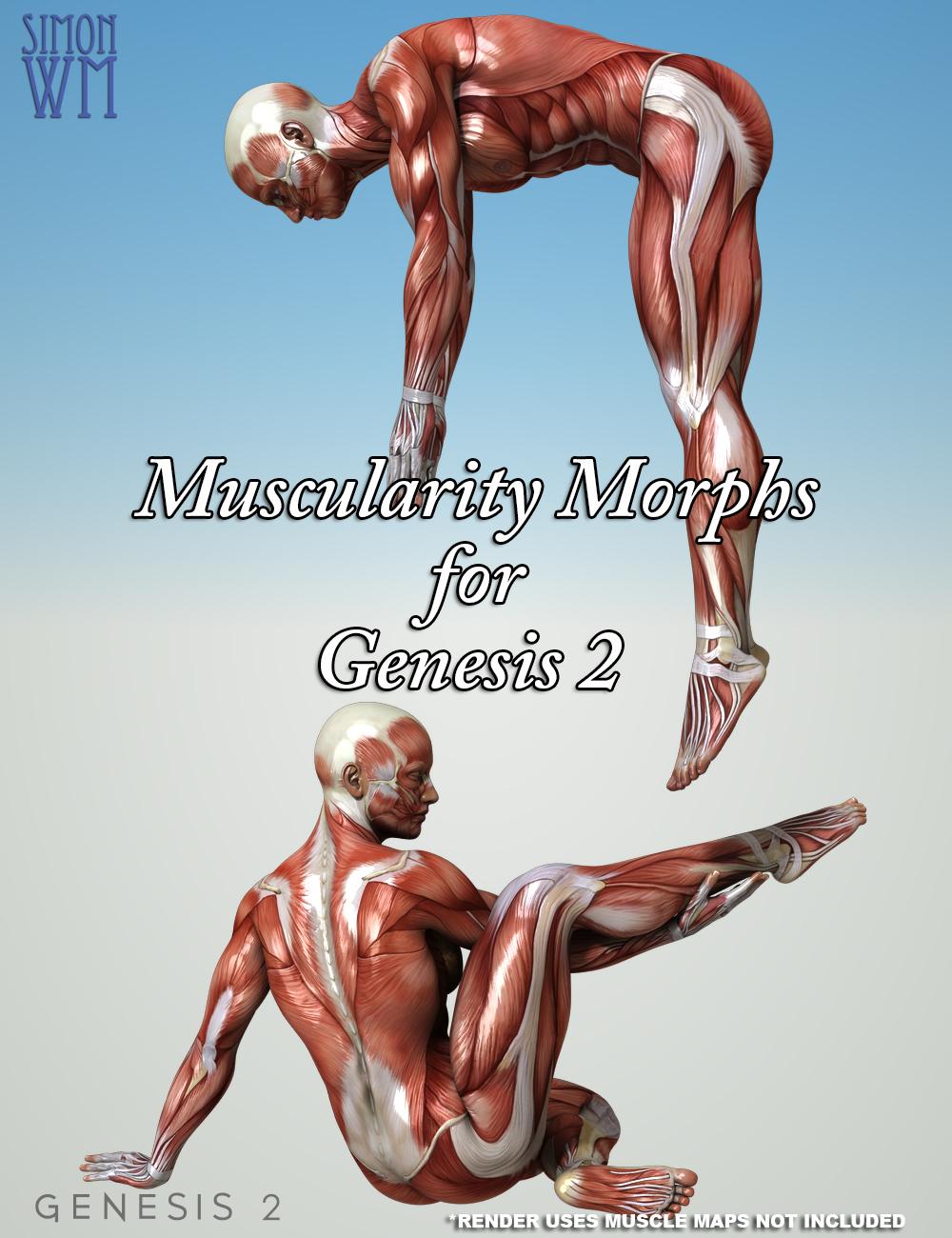 Muscularity Morphs for Genesis 2 Bundle by: SimonWM, 3D Models by Daz 3D