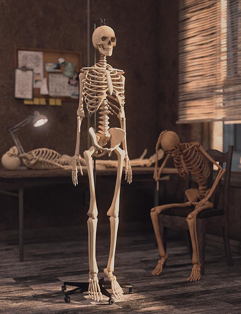 LoREZ Skeleton by: Predatron, 3D Models by Daz 3D