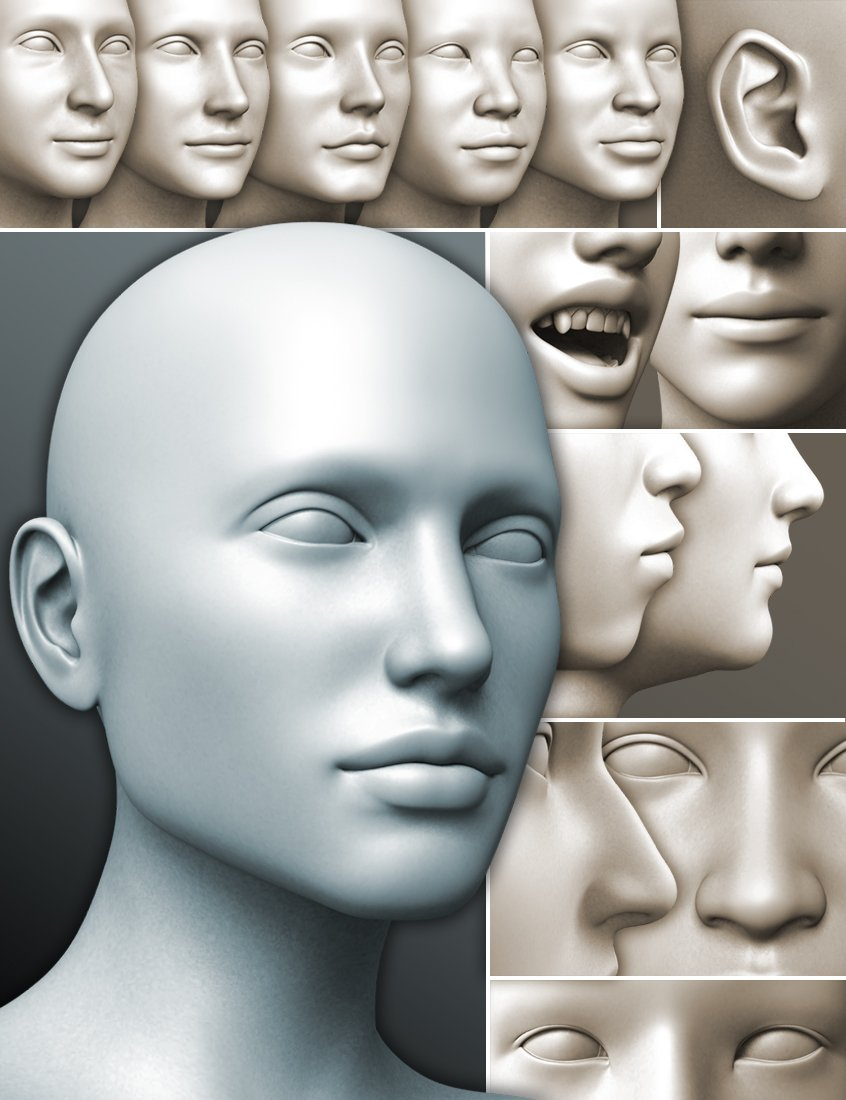 200 Plus - Head & Face Morphs for Genesis 3 Female(s) by: Dogz, 3D Models by Daz 3D