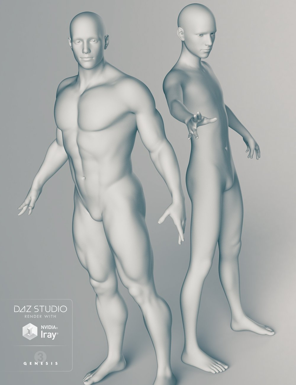 Genesis 3 Male Body Morphs by: , 3D Models by Daz 3D