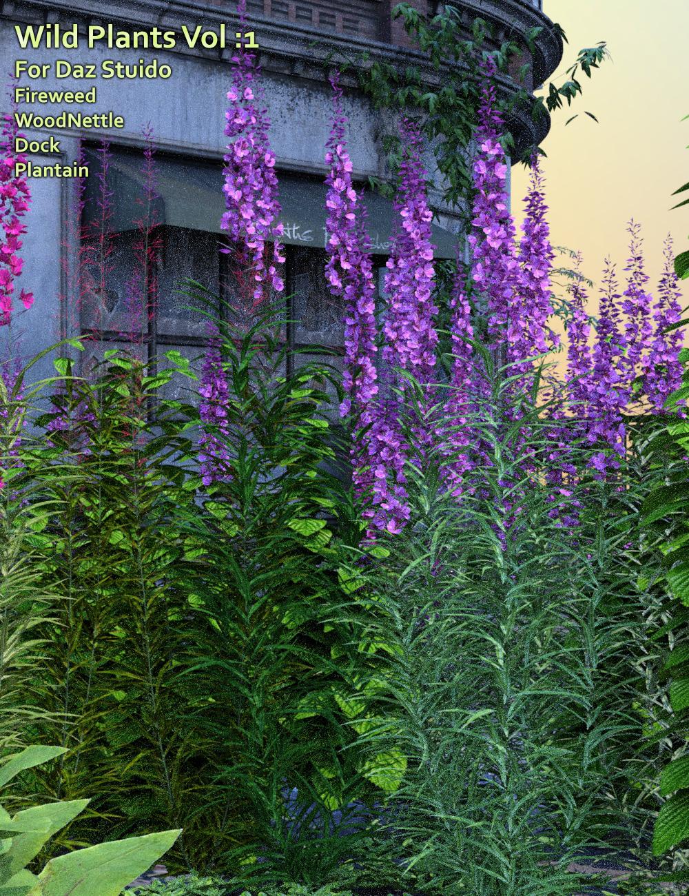 Wild Plants Vol: 1 for Daz Studio by: MartinJFrost, 3D Models by Daz 3D