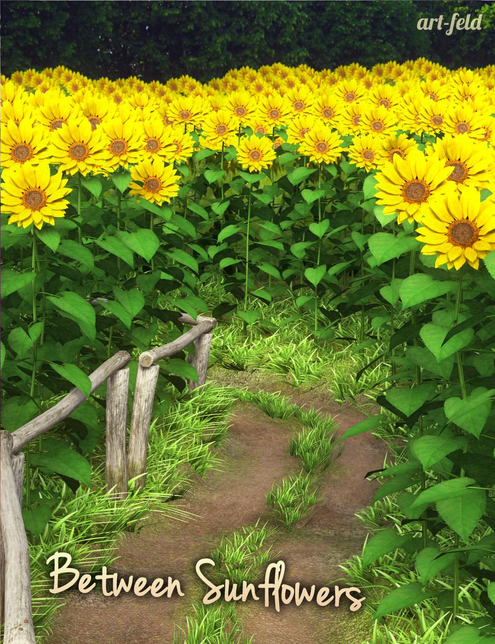 Between Sunflowers by: art-feld, 3D Models by Daz 3D
