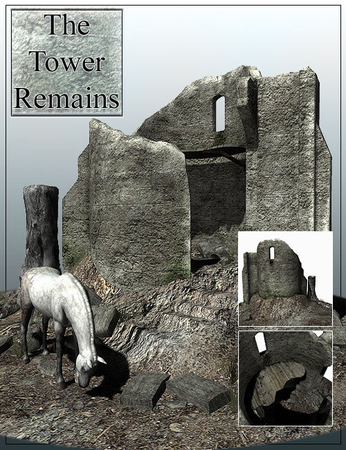 The Tower Remains by: , 3D Models by Daz 3D