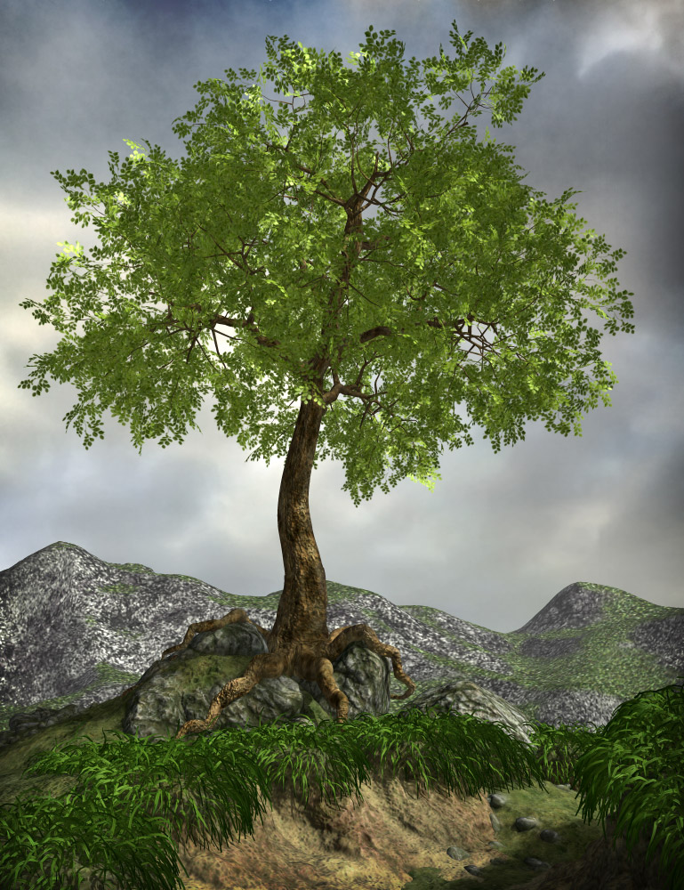 Poseable Forest Trees by: eshaRuntimeDNA, 3D Models by Daz 3D