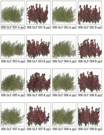 Grasslands Foliage - Volume 6 by: RuntimeDNATraveler, 3D Models by Daz 3D