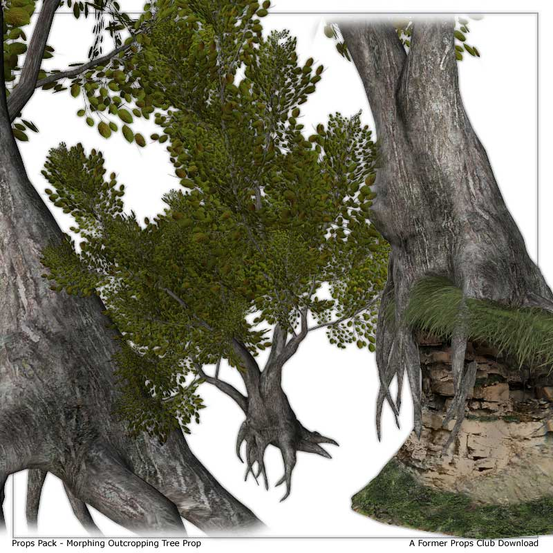 Props Pack - Outcropping Tree by: RuntimeDNATraveler, 3D Models by Daz 3D