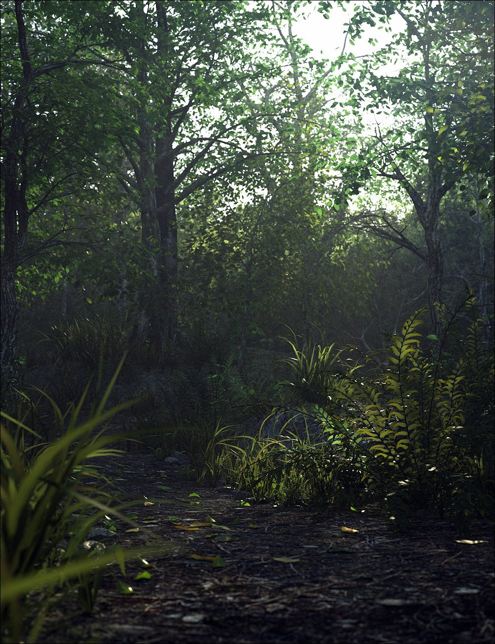Through the Woods by: Stonemason, 3D Models by Daz 3D