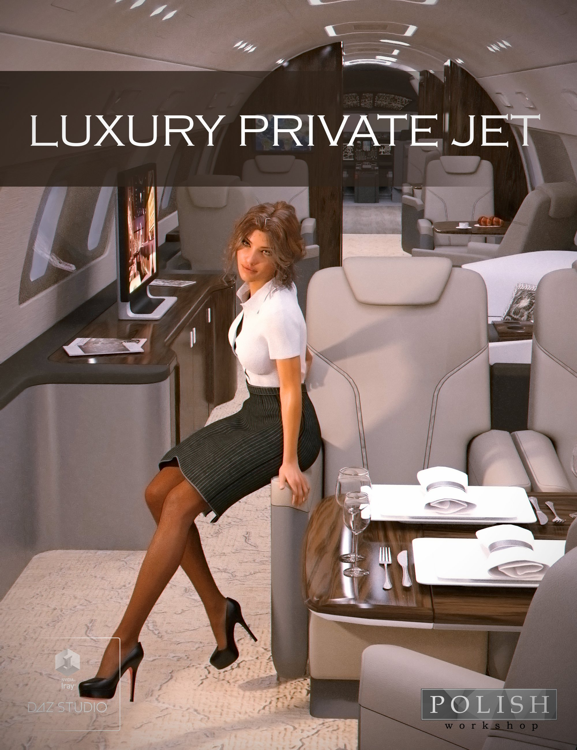 Luxury Private Jet by: Polish, 3D Models by Daz 3D