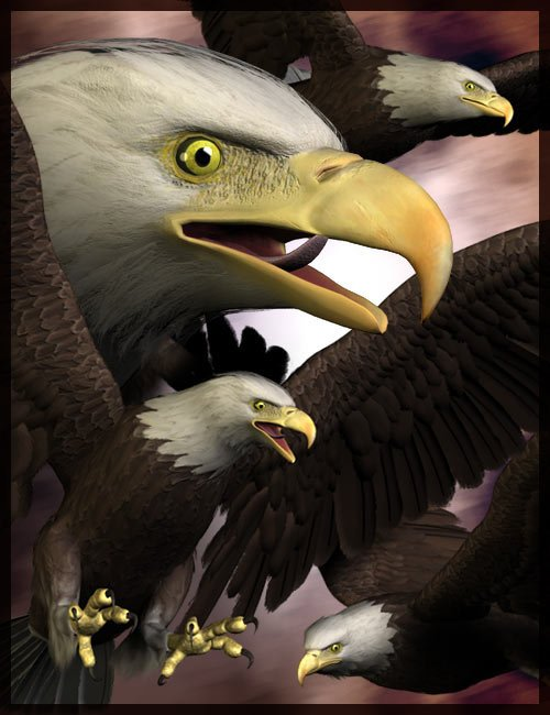 Eagle 2.0 by: , 3D Models by Daz 3D