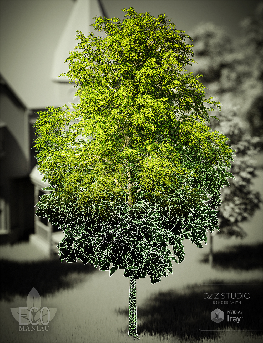 EM - MultiRes Aspen Trees by: DimensionTheoryEcoManiac3D, 3D Models by Daz 3D