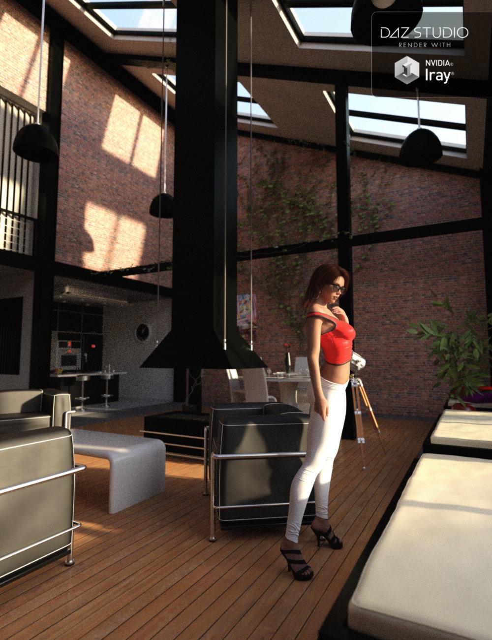 Modern NY Style Loft by: Mely3D, 3D Models by Daz 3D