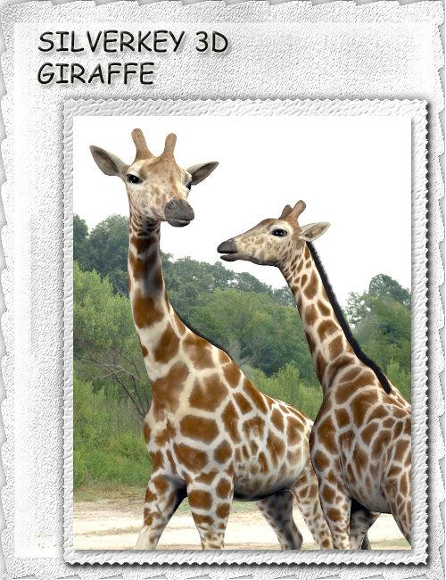 SilverKey 3d Giraffe by: Debra Ross, 3D Models by Daz 3D