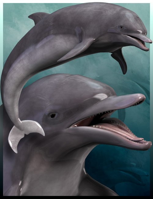 Dolphin by: 3D Universe, 3D Models by Daz 3D