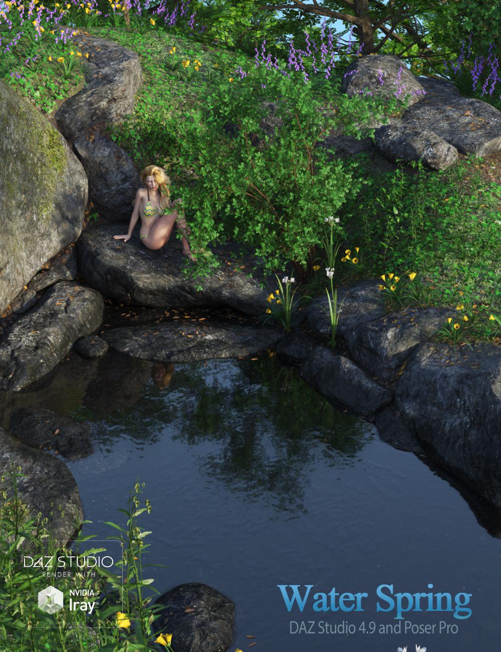 Water Spring by: Andrey PestryakovPeanterra, 3D Models by Daz 3D