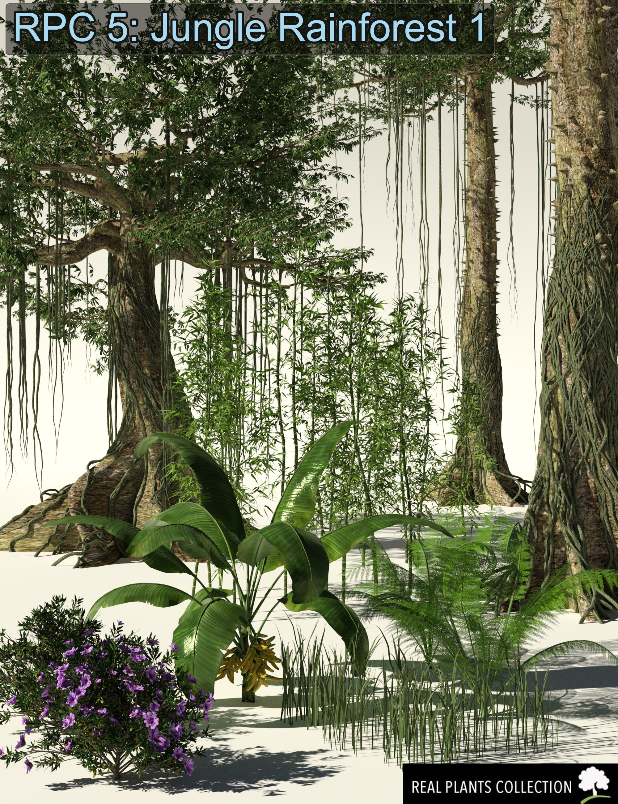 RPC Volume 5: Jungle Rainforest 1 for Daz Studio and Vue by: Alessandro_AMLMX3D, 3D Models by Daz 3D