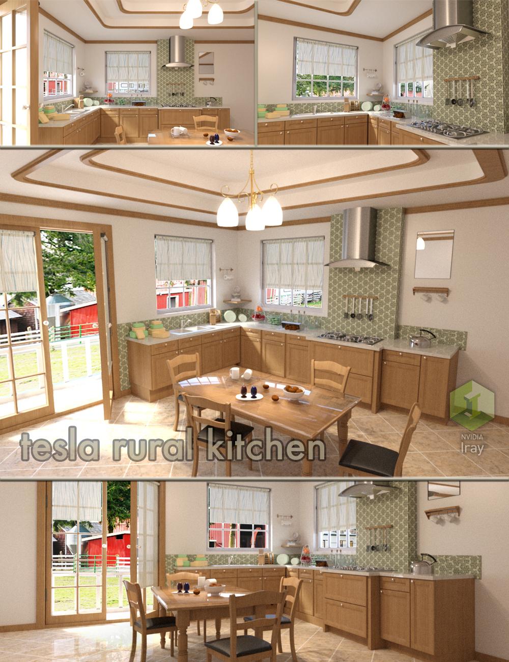 Tesla Rural Kitchen by: Tesla3dCorp, 3D Models by Daz 3D