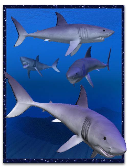 Shark by: , 3D Models by Daz 3D