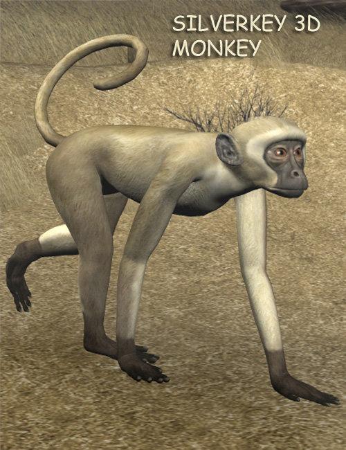 SilverKey 3d Monkey by: Debra Ross, 3D Models by Daz 3D