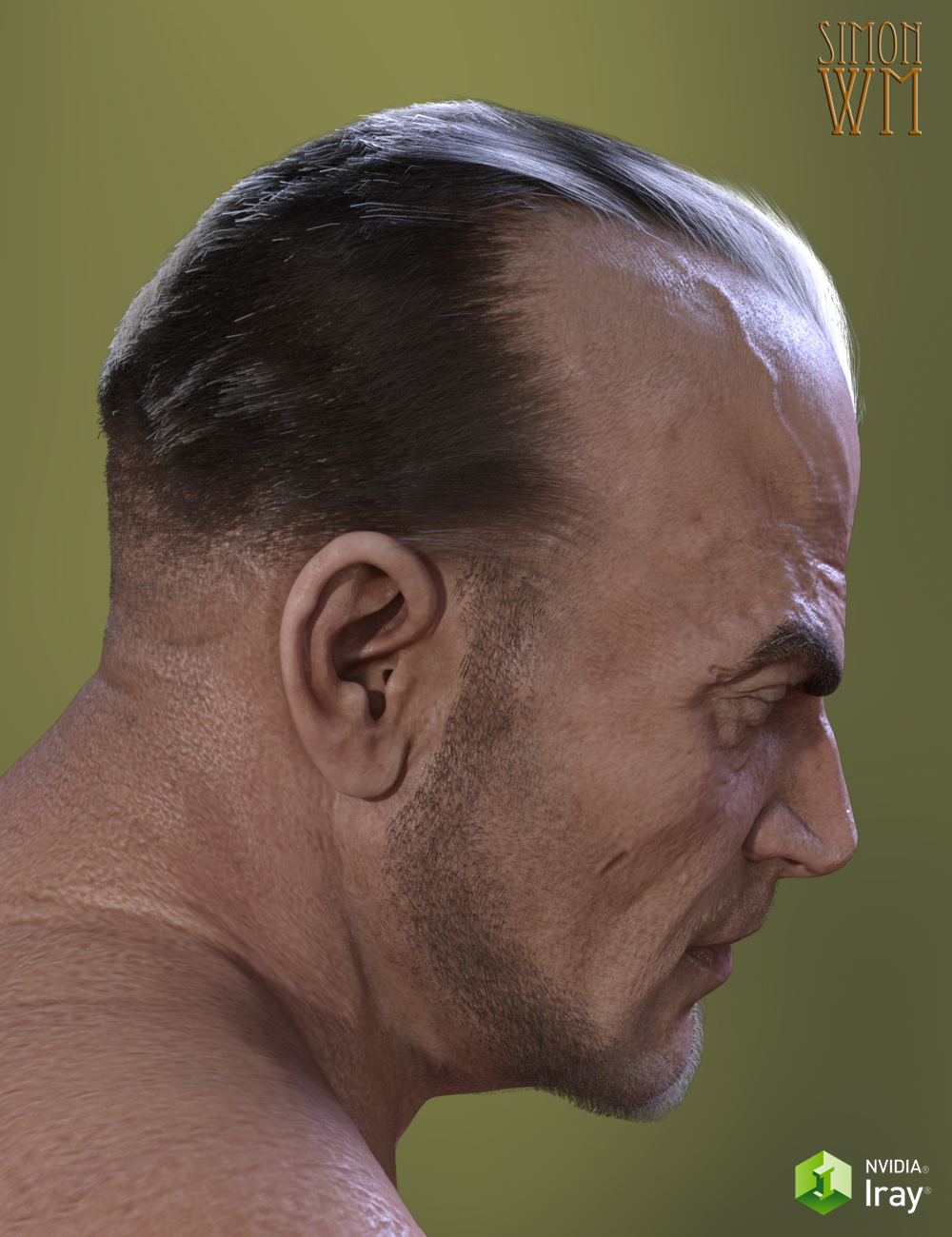 Deep Hairline for Genesis 3 by: SimonWM, 3D Models by Daz 3D