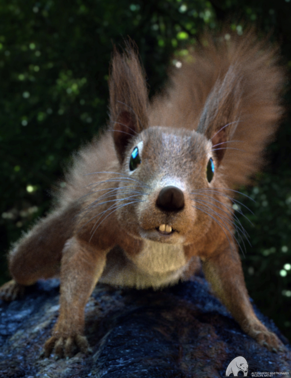 Rodents by AM: Squirrels of Eastern Hemisphere by: Alessandro_AM, 3D Models by Daz 3D
