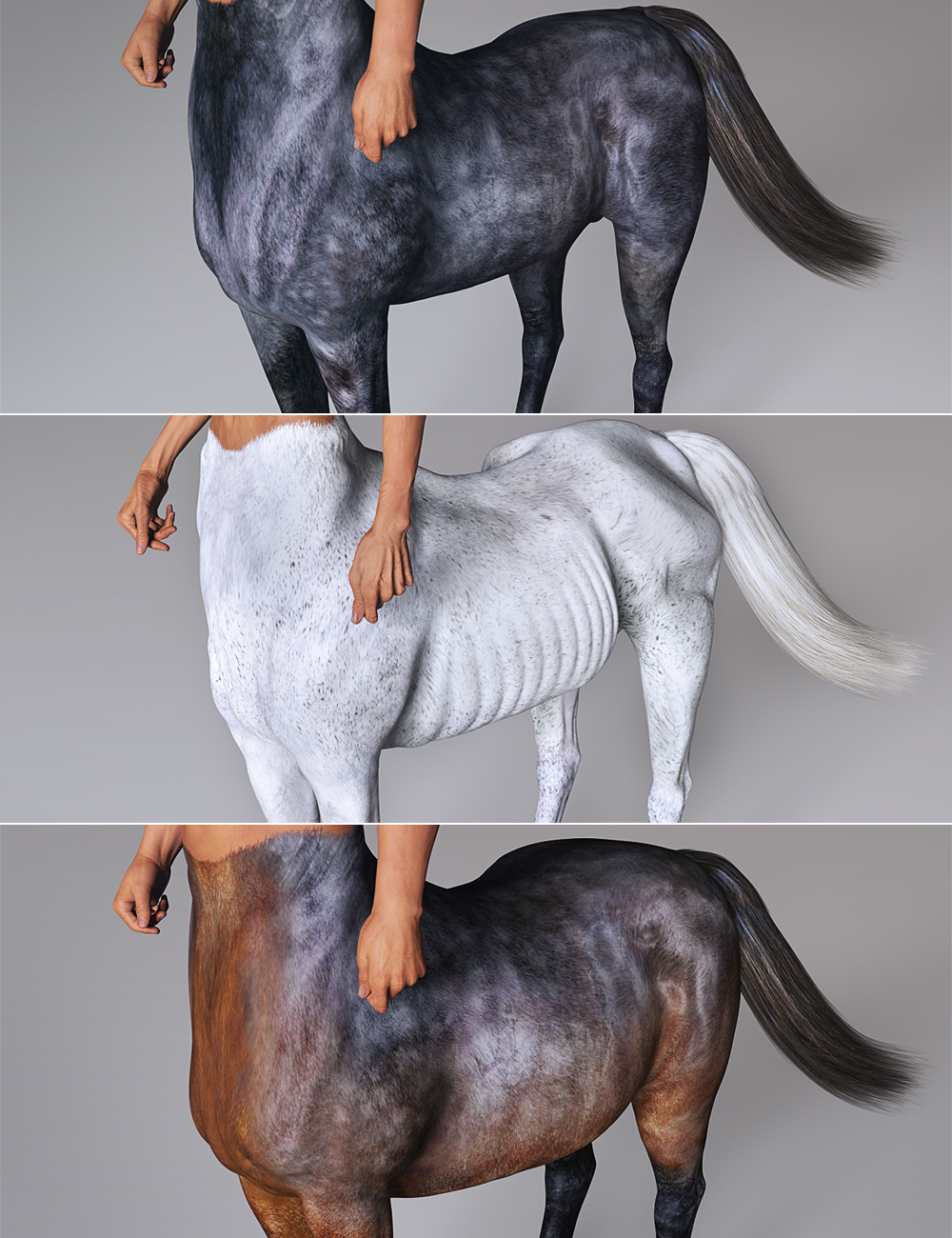Centaur 7 Male Hides and Breeds by: , 3D Models by Daz 3D